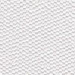 EM1-4553_WHITE