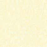 EM1-4555_CHIFFON