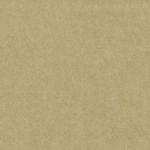 EM1-4588_GOLD