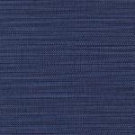Indigo Blue_AZ52547