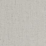 Silver Charm_AZ52618