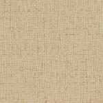 Soft Camel_AZ52624