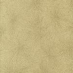 Golden Sand  AZ52551