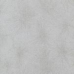 So Silver  AZ52553